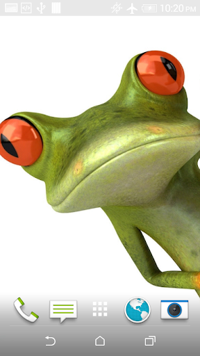 Funny Frog One Wallpaper