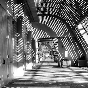 Shadows Everywhere by Nathaniel Jorge - Buildings & Architecture Other Interior ( interior, black and white, hall way, va beach, shadows, building, monotone )