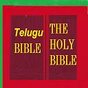 Telugu Bible English Bible Parallel icon