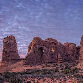 by Mike Moss - Landscapes Deserts