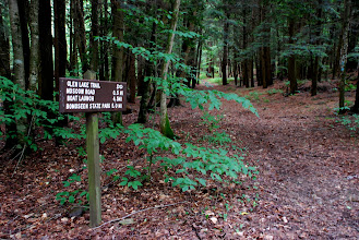 Photo: Glen Lake Trail, Bomoseen State Park by Linda Carlsen-Sperry.