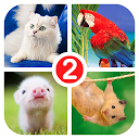 Guess the word 2~4 Pics 1 Word APK