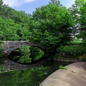 by Gayle M McDermott - Buildings & Architecture Bridges & Suspended Structures
