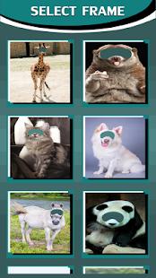 Animal Photo Montage - náhled