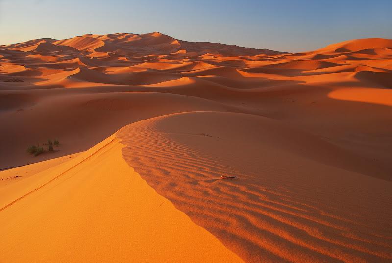 Le curve del deserto di BASTET-Clara