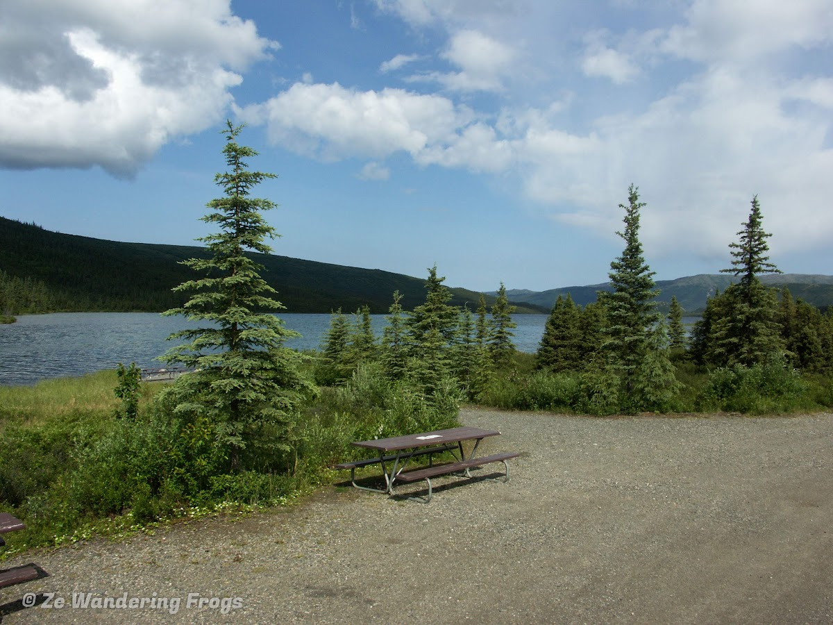 USA Alaska Itinerary 7 Days // Denali National Park Wonder Lake