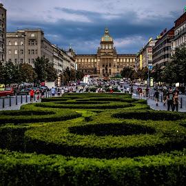 National Museum (Prague) by Aamir DreamPix - City,  Street & Park  City Parks ( parague, museum, buildings )