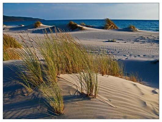 Dune di Porto Pino di longroute