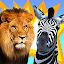 صراع الحيوانات icon