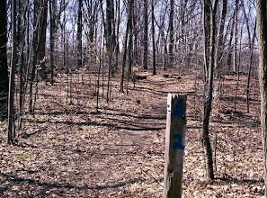 Photo: Mile marker on Waterloo-Pinckney Trail, April 27th