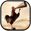Rooster - Cock a Doodle Do icon