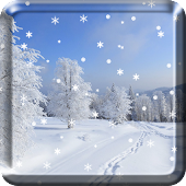 Winter Snow Live Wallpaper  HD