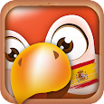 Learn Spanish Phrases | Spanish Translator apk