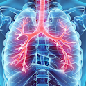 Respiratory diseases & respiratory therapy icon