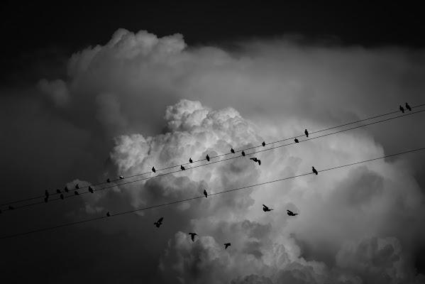 melodia tra le nuvole di Alessi Girlando