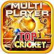 Top Cricket MultiPlayer APK