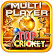 Top Cricket MultiPlayer icon