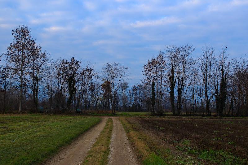 Pomeriggio invernale di aurorabertoncello