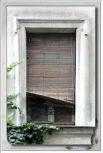 Foto: Fenster im Grünen
