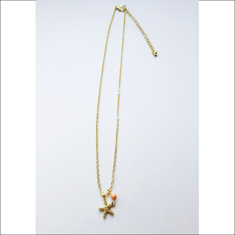 N024 - G. Starfish by your side Necklace