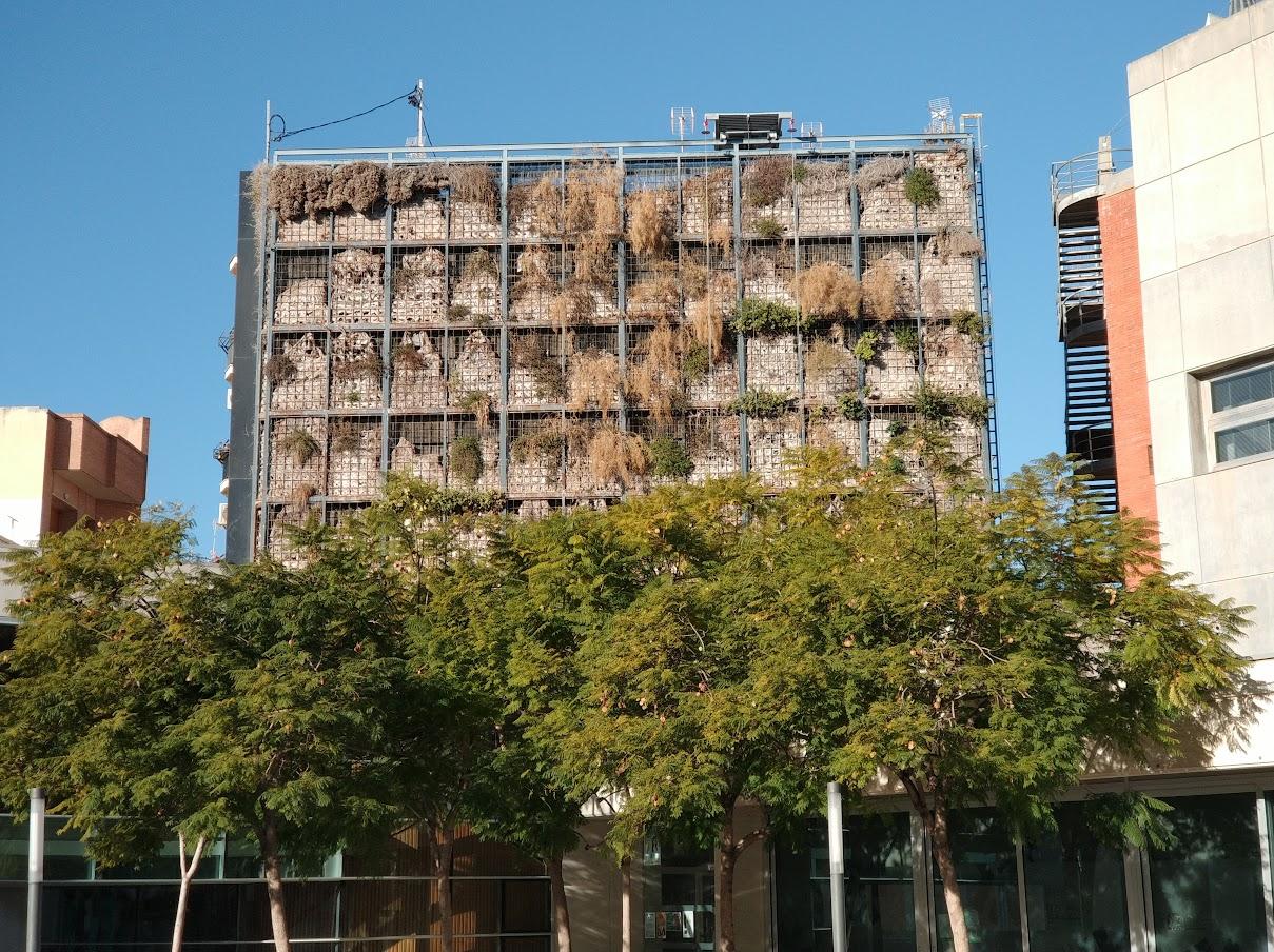 jardín vertical en san vicente
