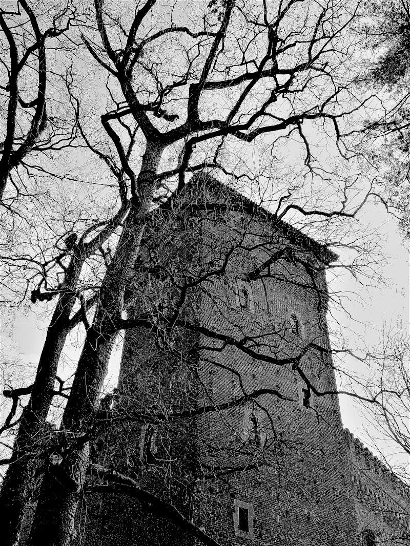Torre animata di 1marti2