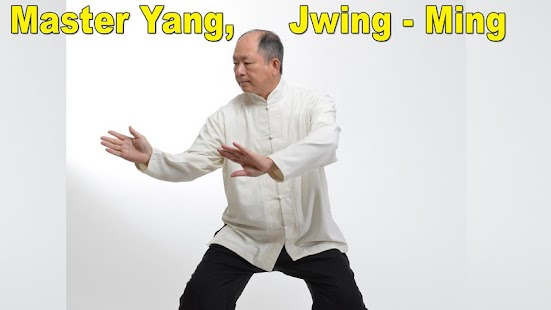 Tai Chi 108 Yang Form- screenshot thumbnail