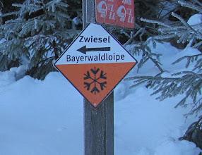 Photo: Bayerwaldloipensymbol