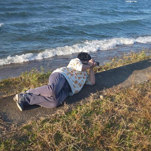 asch@琵琶湖の人魚のプロフィール画像