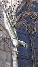 Photo: Notre Dame gargoyles