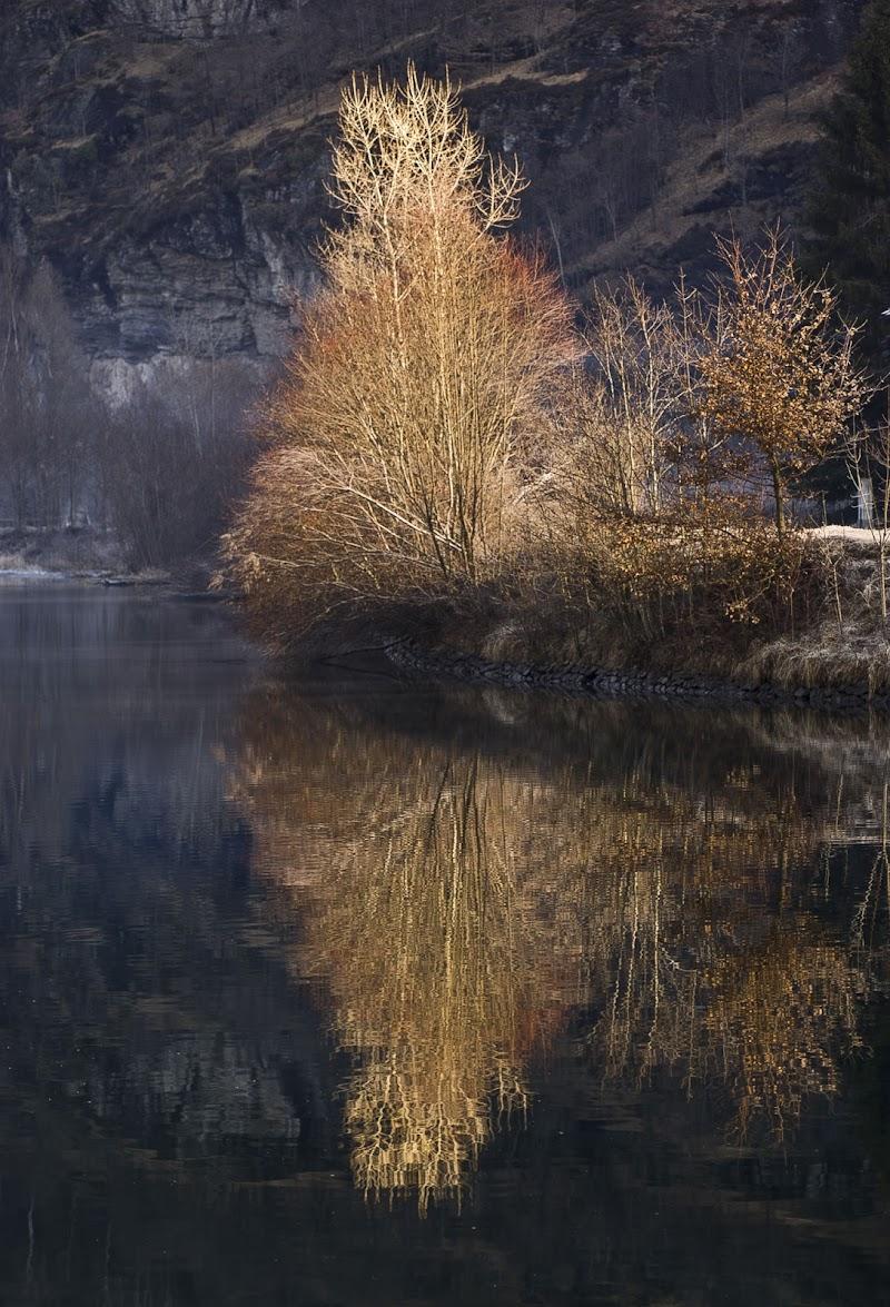 Specchio d'autunno di Tiziana Detoni