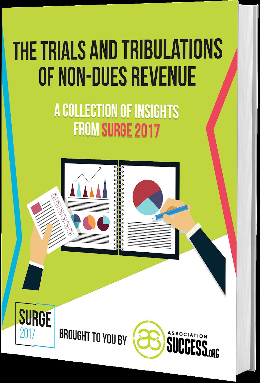 Download Non-Dues Revenue eBook