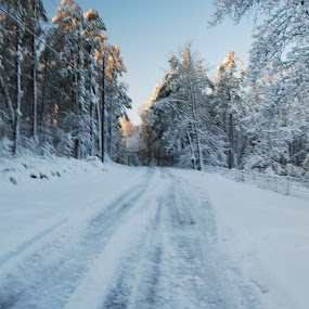 ICY ROADS by Larry Moore - Landscapes Weather (  )
