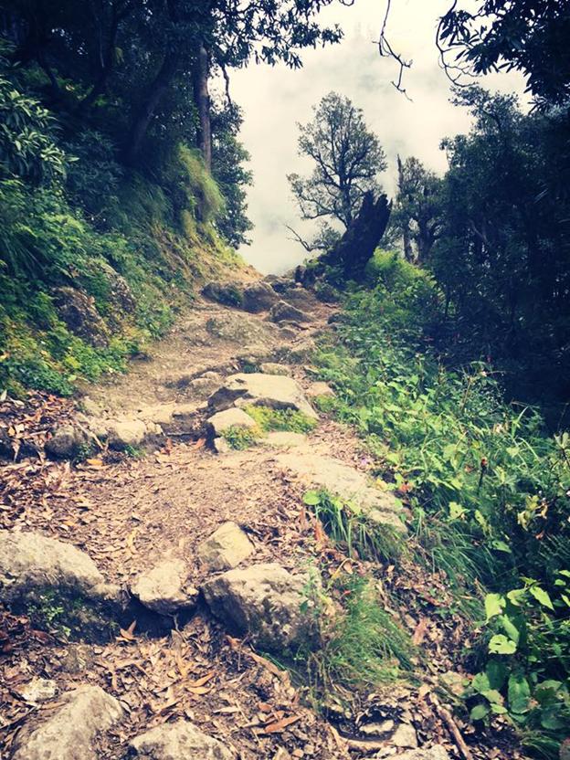 Midway of trek