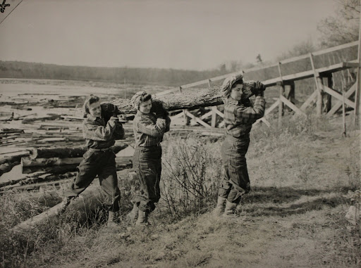 Women Lumberjacks Carrying Logs at Turkey Pond, New Hampshire, as Part of an Experimental Project to Saw up Seven Million Feet of 1938 Hurricane Lumber