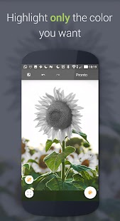 Paletta - Smart color splash- screenshot thumbnail