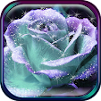 3D Rose Liv.. file APK for Gaming PC/PS3/PS4 Smart TV