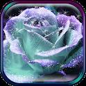 3D Rose Live Wallpaper icon