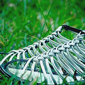 My shoes by Lisawati Gunawan - Artistic Objects Clothing & Accessories ( shoes, clothing accesories, objects, , artistic, object )