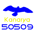Kanarya 50509 Oyunu icon