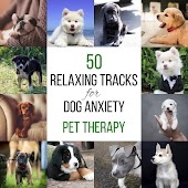 50 Relaxing Tracks for Dog Anxiety: Pet Therapy, Calming Music, Harmony and Peace, Animal Reiki, Holistic Healing