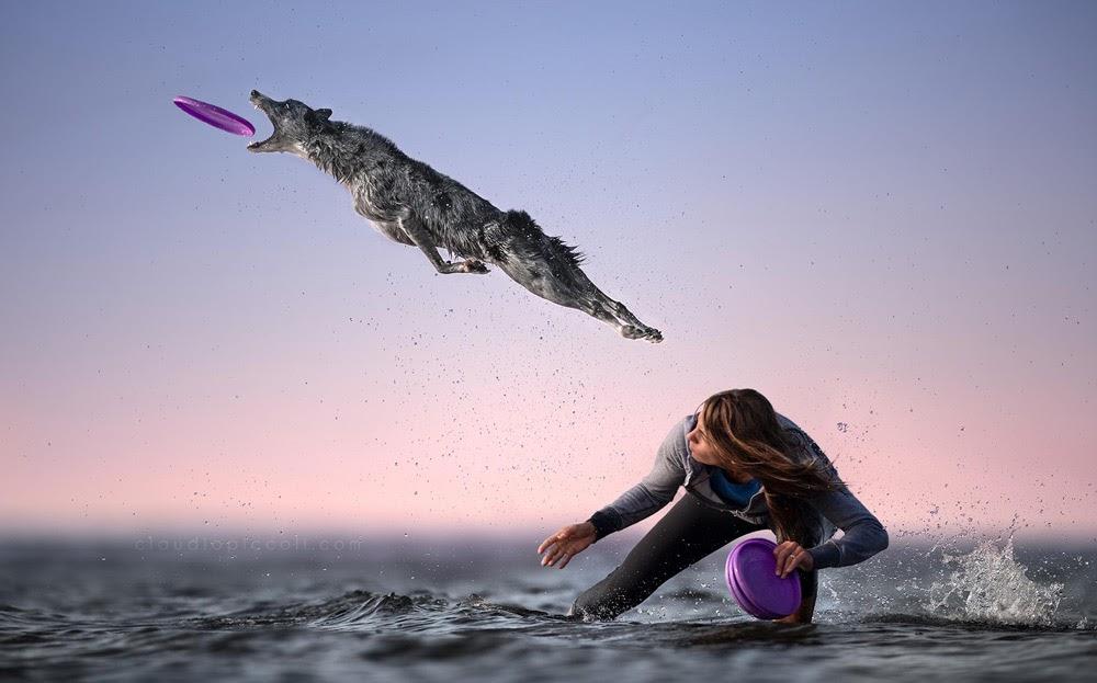 Как подготовить собаку к перелету в домашних условиях