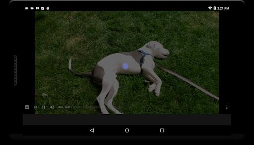 Viewdeo (free): Reddit Video Sharing made Simple 4.1.3 screenshots 7