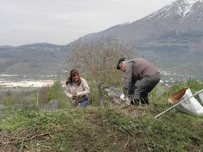 Photo: Volontarie e volontari al lavoro per ripulire le mura di Alba Fucens