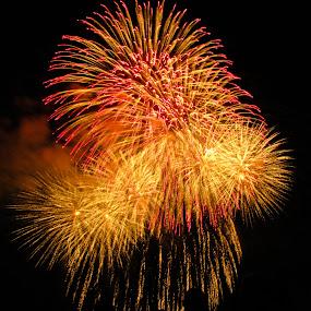 by Brooke Beauregard - Abstract Fire & Fireworks