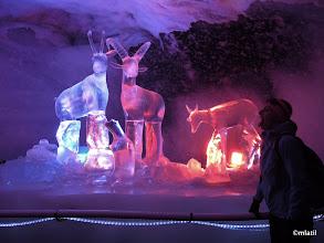 Photo: in the glacier cave