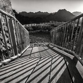 The Bridge by Ebtesam Elias - Black & White Objects & Still Life