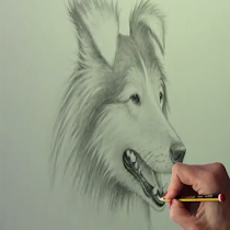 How to draw Dogs - screenshot thumbnail 01