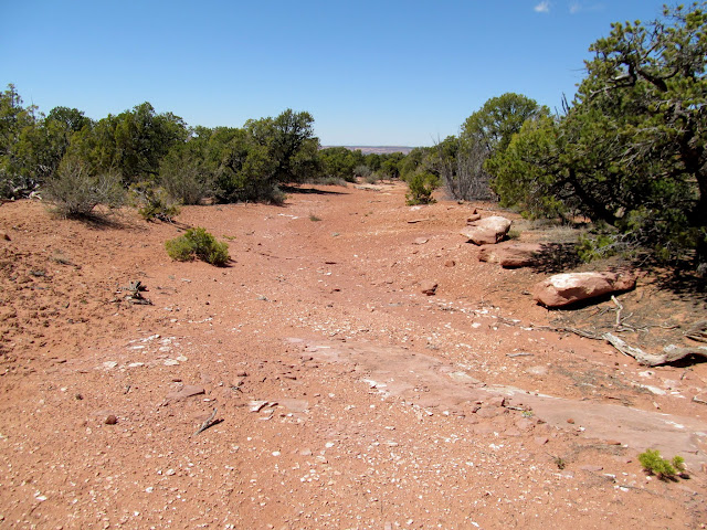 Old, closed road leading to an abandoned drill hole