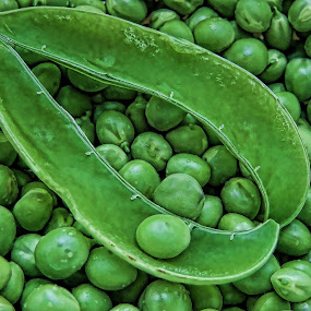 Dave's Peas by Gwen Paton - Food & Drink Fruits & Vegetables ( green, peas in shell, vegetable, garden, peas,  )